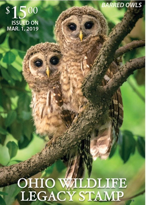 The 2019 Ohio Wildlife Legacy Stamp features the barred owl. The sale of the stamp benefits the Wildlife Diversity Fund, which is used to protect and manage wild animals and their habitats.