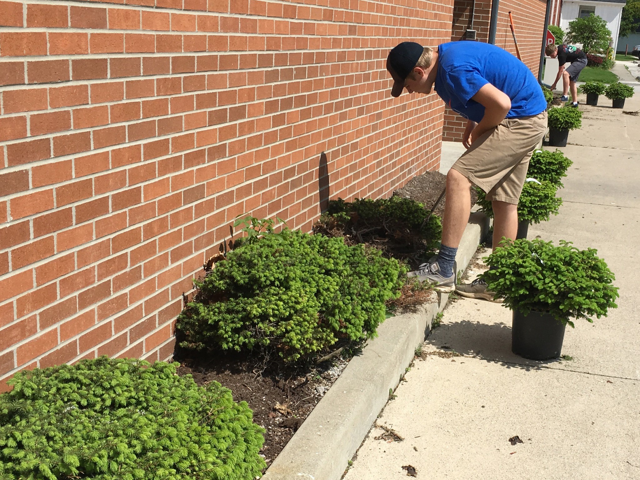 Woodmore High School junior Dalton Selhorst, who achieved the rank of Eagle Scout on Sept. 24, improved landscaping around the Harris-Elmore Public Library as his Eagle Project. (Submitted photo)
