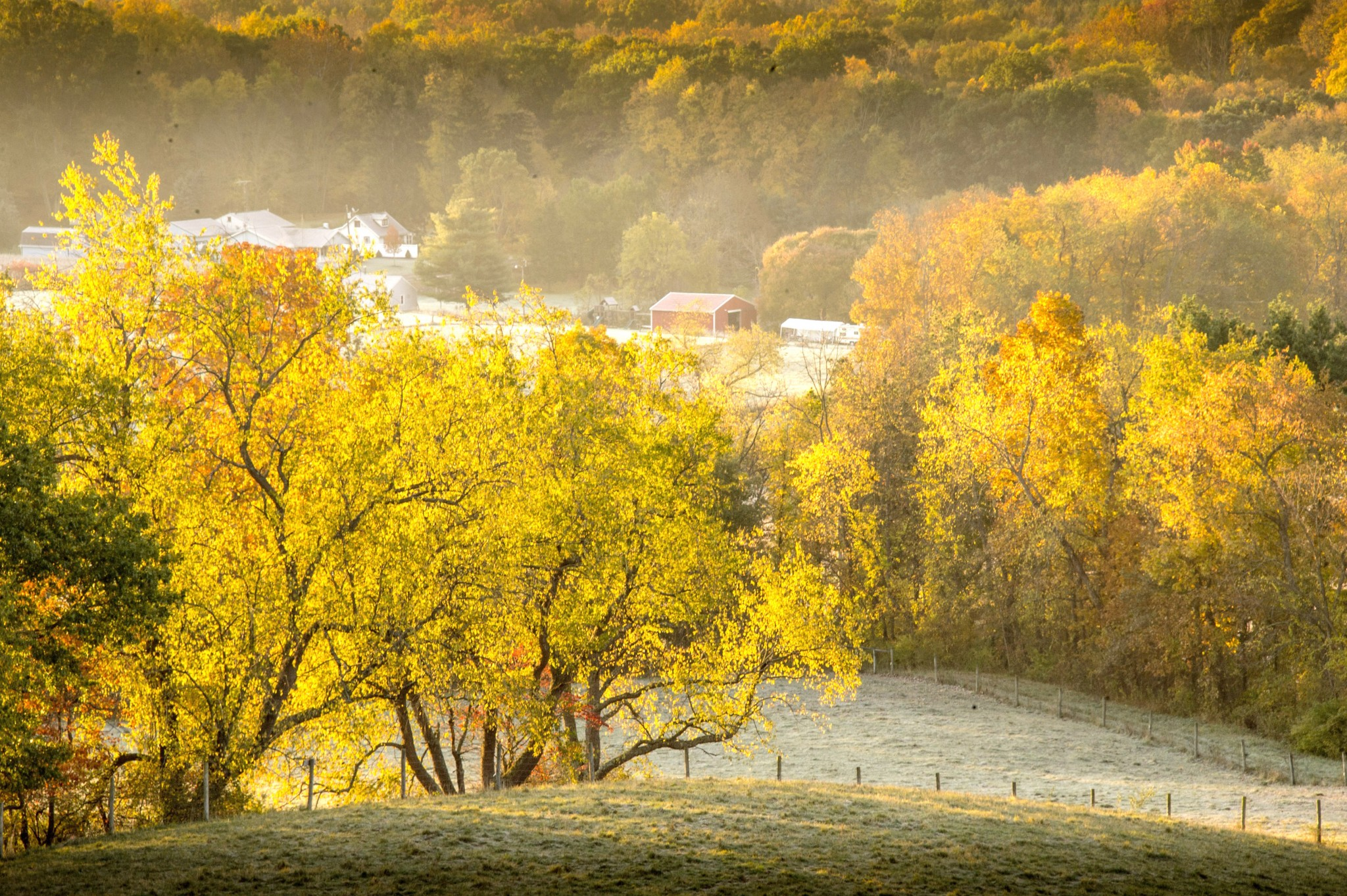 The view from Malabar Farm State Park's Mt. Jeez on a frosty October morning. The region's fall colors will hang on into early November before the holiday season settle in. (Photo by Art Weber)