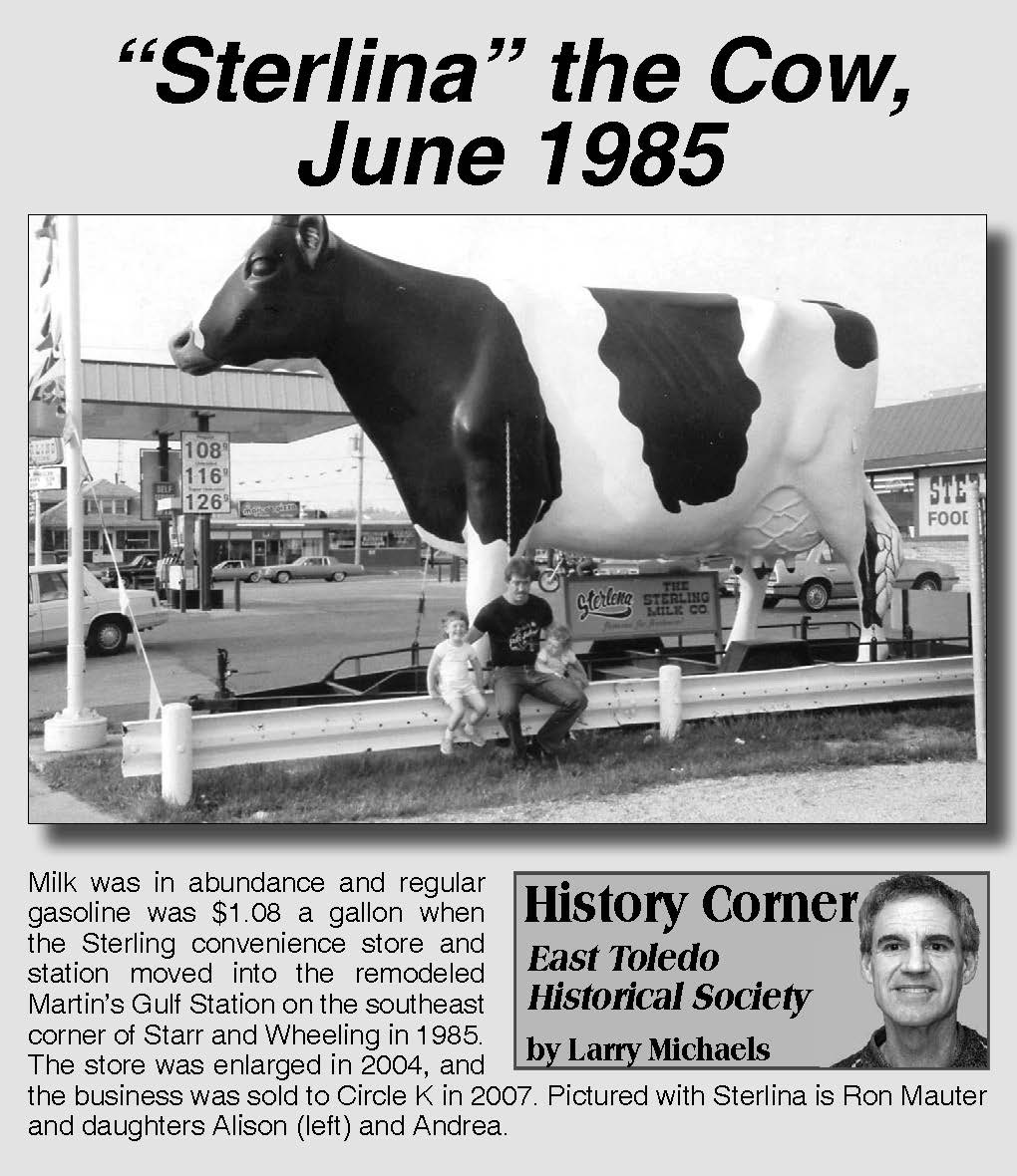 Sterlina the Cow, History Corner