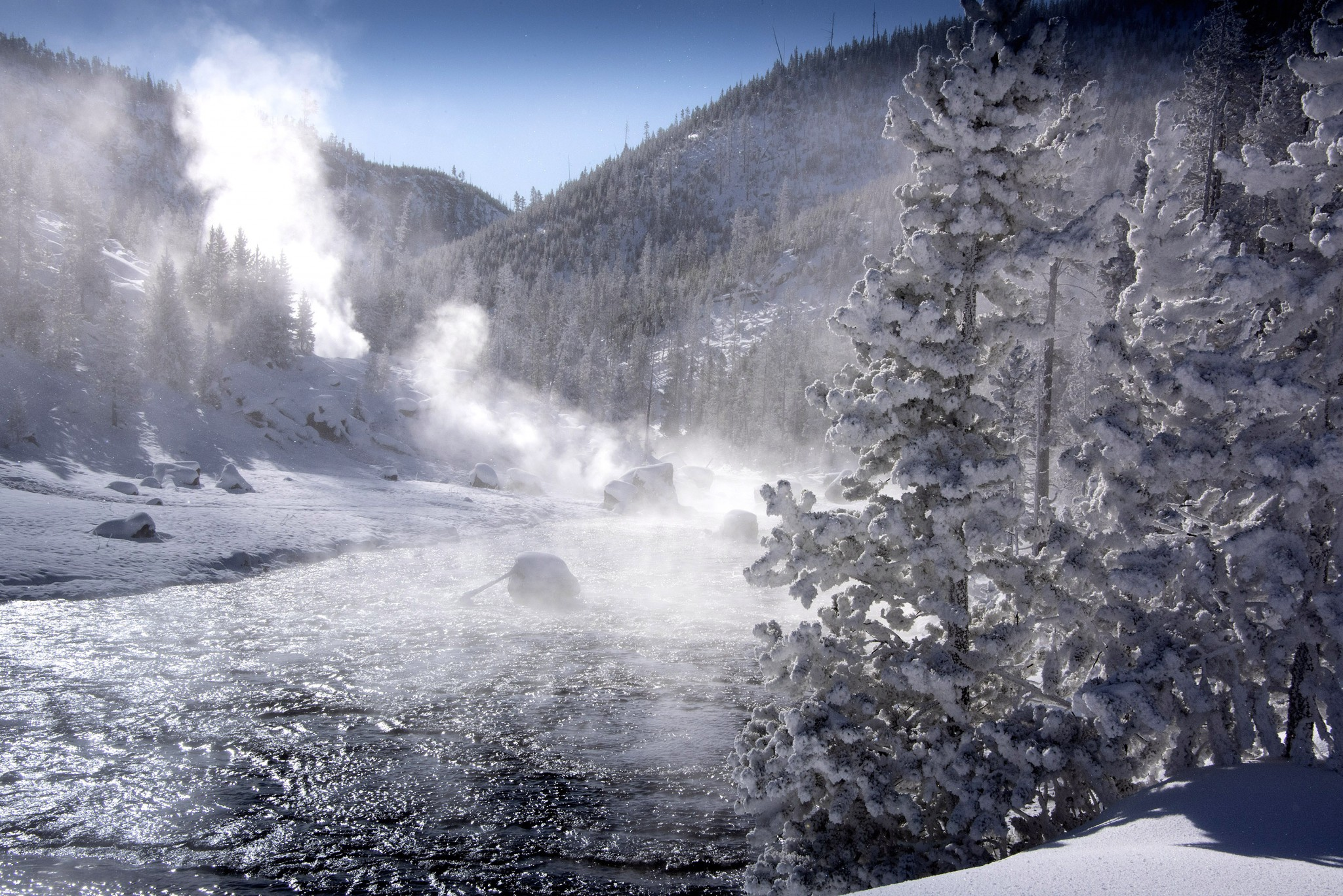 Yellowstone's Gibbon River near Beryl Spring is a winter wonderland where steam rises into surrounding trees and freezes. (Photo by Art Weber)