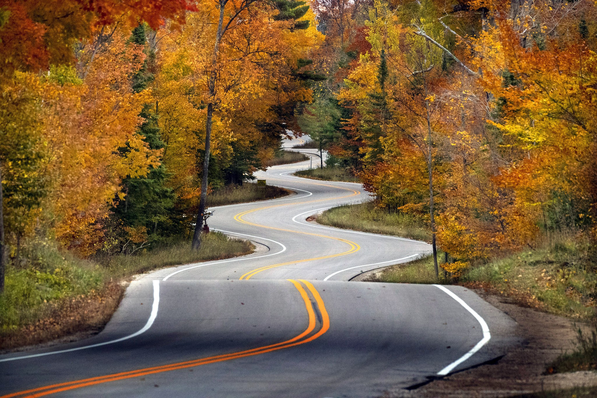 """The winding road across the northern tip of Door County is one big reason that area is frequently named one of the best fall color drives in the nation. The """"Windy Road,"""" as it's commonly called, was designed to make people slow down and enjoy the scenery. It works. Drivers frequently have to slow down even more for photographers. (Photo by Art Weber)"""