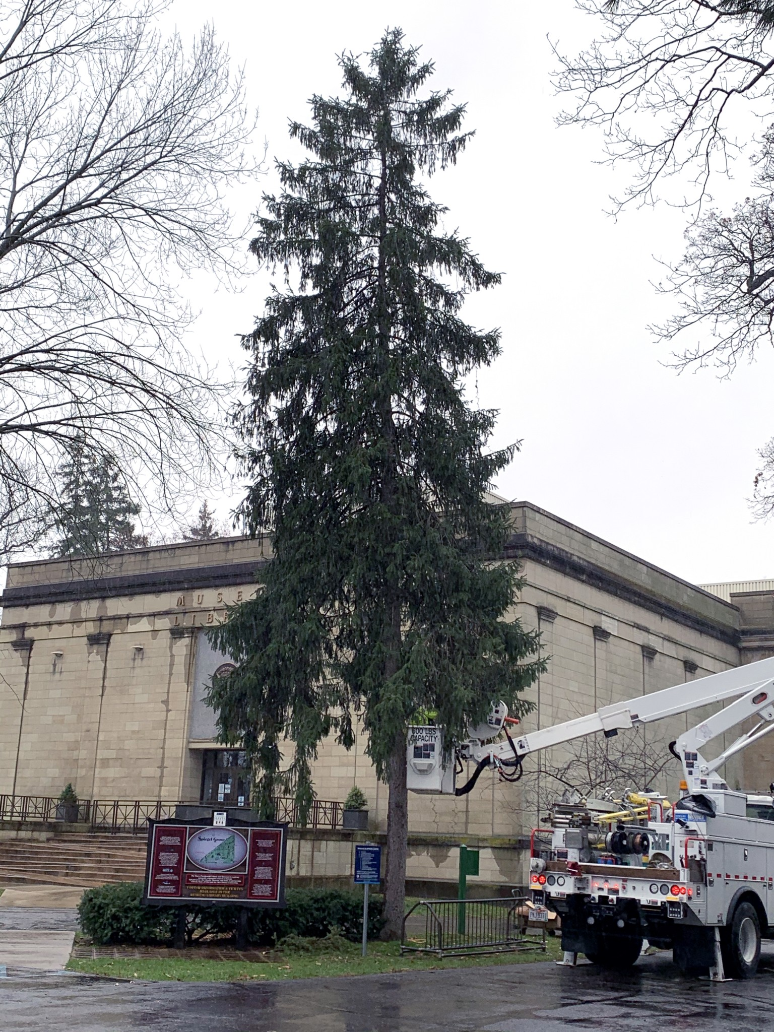 American Electric Power workers hang lights on what will be the Hayes Presidential Christmas tree. Workers volunteered their time to help Hayes Presidential. (Submitted photo)