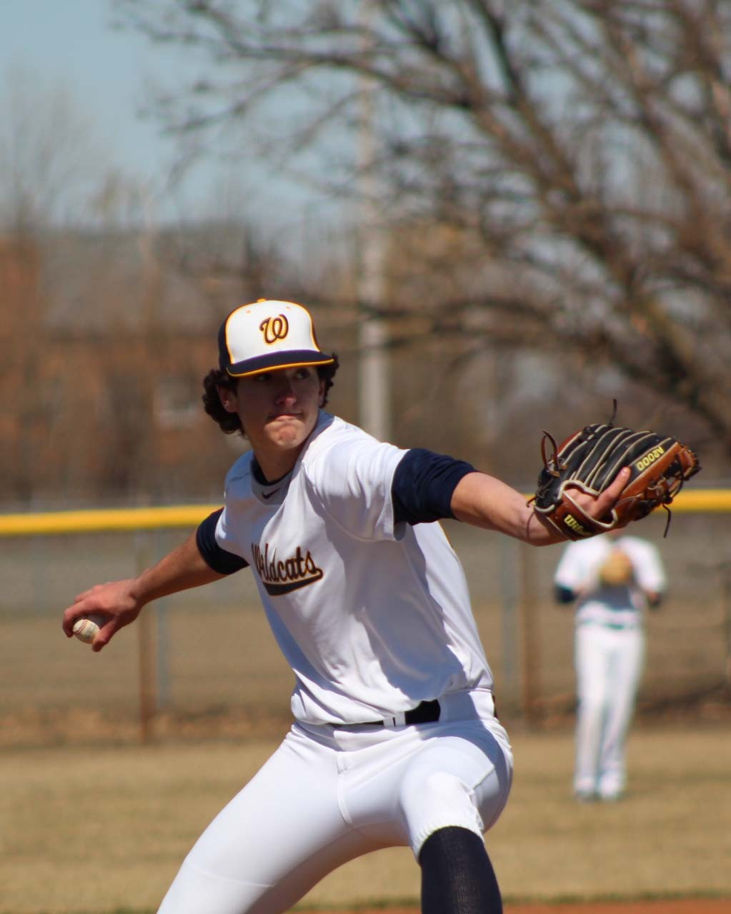 Woodmore 6-foot-4, 200-pound senior pitcher Hunter Allen.  (Photo by Joe Belak)