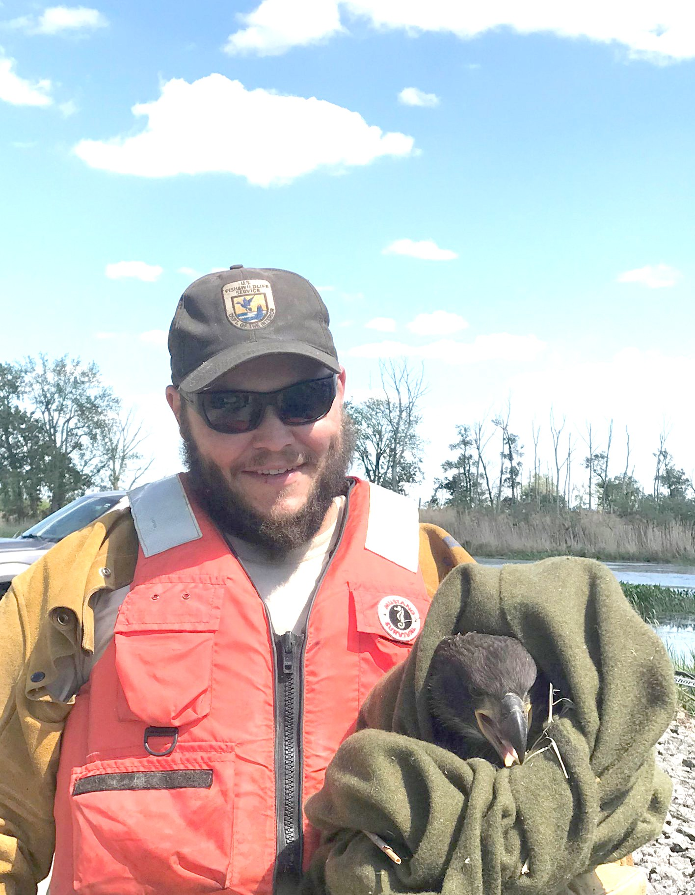 Ottawa National Wildlife Refuge maintenance worker Ramsay Houze with a rescued eagle chick in June 2020. The eagle's nest blew down in a thunderstorm and three chicks were rescued, rehabilitated by Back to the Wild and released back on the refuge. (Photo by USFWS)