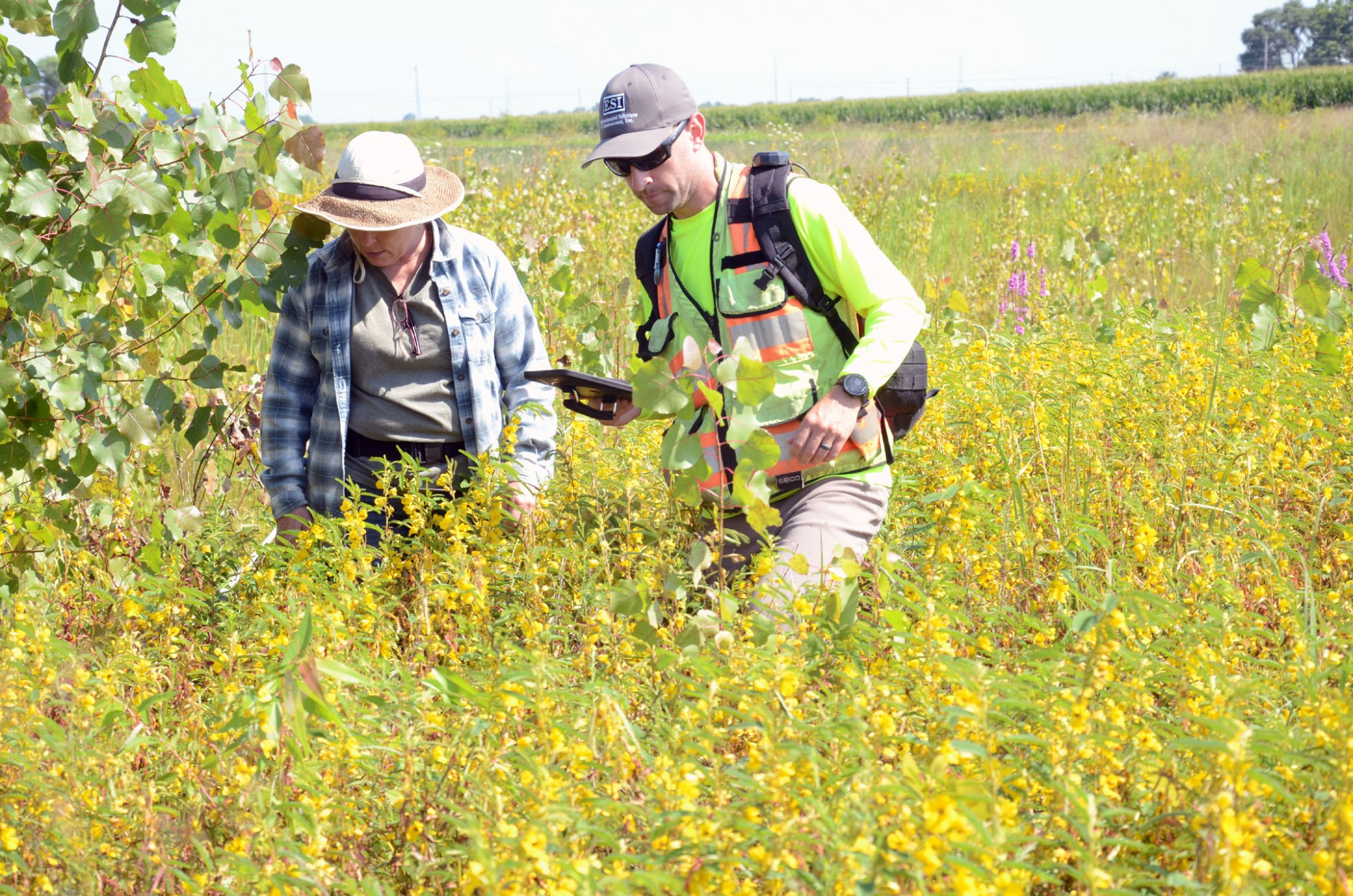 """Beth Ackerman, one of the property owners who is opposed to an industrial park on the east side of the city, walks a portion of the wetlands with Scott Denham, a Wetland and Environmental Manager for Environmental Solutions and Innovations, Inc., Ravenna, Ohio. """"Since the City of Oregon hasn't done an environmental impact assesment, the Save the Wetlands group is paying for the assesment,"""" said Ackerman. (Press photo by Ken Grosjean)"""